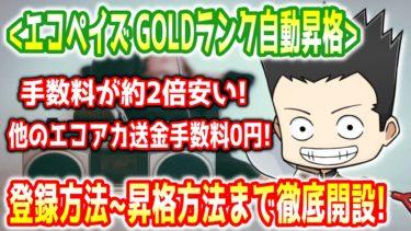 【エコペイズ】GOLD自動昇格の方法と登録方法を徹底開設!!